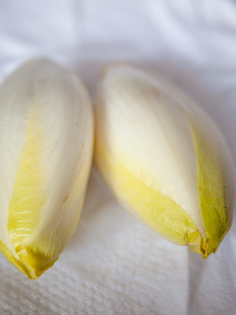 Belgian Endive and Radish Salad