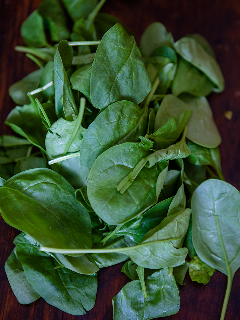 Farrro and Apple Cranberry Salad